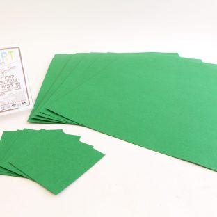 מארז 18 יחידות קארדסטוק דמוי עור ירוק