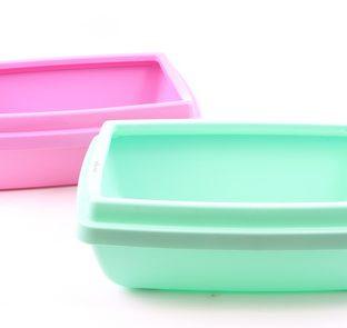 קופסא פלסטיק צבעונית לחתולים