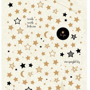 מדבקות SHINE LIKE A STAR