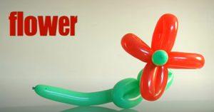 פרח מבלונים