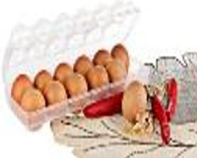 קופסאת אחסון לביצים