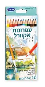 12 עפרונות אקוורל אומנות - אומגה